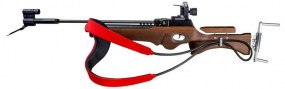Laser Biatlon rifles and targets